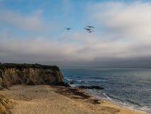 Pelikanenvlieg boven het Halve strand van de maanbaai stock foto's