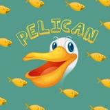 Pelikanframsida och fisk Arkivbilder