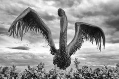 Pelikanstatyn, Lausanne Royaltyfri Bild