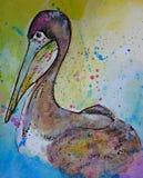 Pelikanvattenfärgillustration Royaltyfri Fotografi