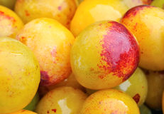 Pell mell plums Stock Photos