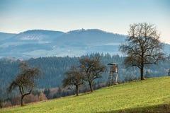Pellame alzato sul campo e sulle colline e foreste nei precedenti Immagini Stock