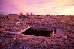 Pellame sotterraneo con gli uccelli acquatici dell'esca immagine stock libera da diritti
