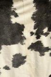 Pelle bovina Fotografia Stock