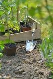 Pelle dans le jardin à planter l'usine végétale dans le jardin photo libre de droits