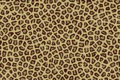 Pelle del giaguaro Fotografia Stock