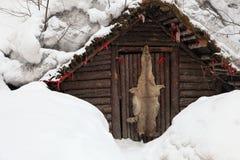 Pelle del lupo Fotografie Stock Libere da Diritti