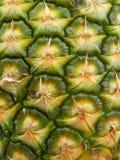 Pelle dell'ananas Fotografia Stock