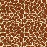 Pelle della giraffa Immagine Stock Libera da Diritti