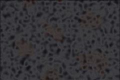 Pelle della pantera nera Fotografie Stock Libere da Diritti