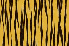 Pelle della tigre Fotografia Stock Libera da Diritti