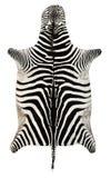 Pelle della zebra Immagine Stock