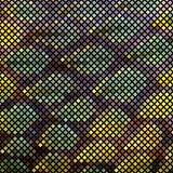 Pelle di serpente del mosaico Fotografie Stock Libere da Diritti