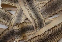 Pelle di serpente genuina Fotografia Stock