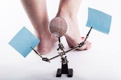 Pelle disidratata alle calcagna dei piedi femminili fotografia stock libera da diritti