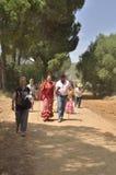 Pellegrini che camminano fra i pini Fotografia Stock Libera da Diritti