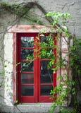 Pellende Rode Deur & Groene Wijnstokken Stock Foto