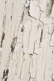 Pellende witte verf Stock Afbeelding