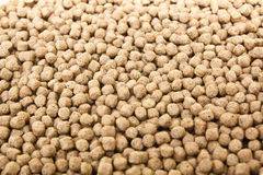 Pellet Fish Feed Stock Image