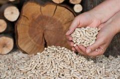 Pellets. Peletts-pine and oak pelett- selective focus on the heap Royalty Free Stock Photo