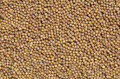 Pellets background Royalty Free Stock Photography
