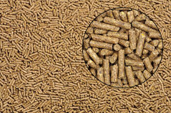 Pellets background. Close-up on animal food with magnifying glass Stock Photography
