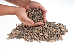 Pellets- biomass. Different kind of pelles in female hands on the white background Royalty Free Stock Photo