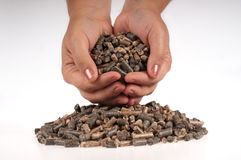 Pellets- biomass. Different kind of pelles in female hand on the white background Royalty Free Stock Photography