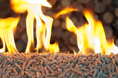 Pellets- biomass Obraz Stock