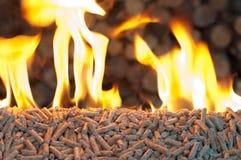 Pellets- biomass. Oak Pellets in  flames- chopped firewood background Stock Image
