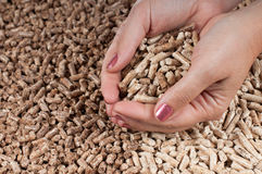 Pellets- biomass Obrazy Royalty Free
