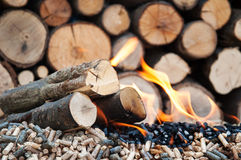 Pellets-Biomass. Different kind of pellets and fire woods in  flames Stock Image