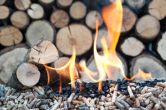 Pellets- Biomass. Oak and sunflower pellets in flames- stock image Stock Photo