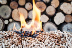Pellets-Biomass Stock Image