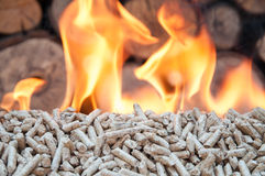 Pellets- Biomass. Pine pellets in flames- stock image Stock Photo