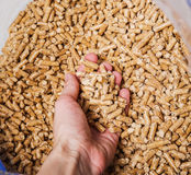 Pellets Royalty Free Stock Images