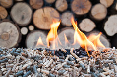 Pellets in flames Royalty Free Stock Images