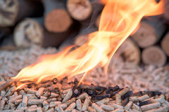 Pellets in flames Stock Images