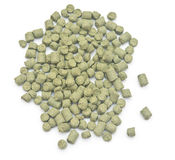 Pellets of hops Stock Image