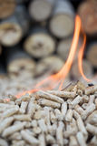 Pellets inflames Royalty Free Stock Photo