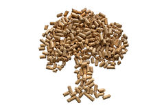 Pellets tree. Stock Photos