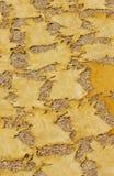 Pelli tinte della capra Fotografie Stock Libere da Diritti