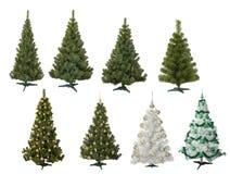 Pelliccia-alberi immagini stock libere da diritti