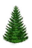 Pelliccia-albero Fotografie Stock
