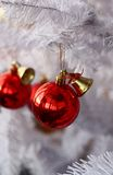Pelliccia-albero bianco e palla rossa Immagini Stock