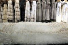 Pelliccia bianca Fotografia Stock
