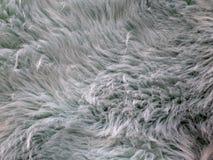 Pelliccia d'imitazione di colore bluastro con alcuno e fluffiness fotografie stock libere da diritti