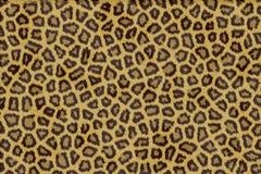 Pelliccia del leopardo illustrazione vettoriale