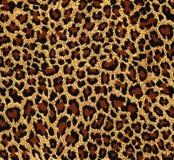 Pelliccia del leopardo come fondo fotografia stock