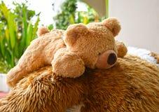 Pelliccia della bambola dell'orso all'aperto Fotografia Stock